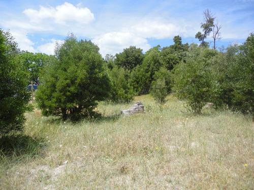 0e0te123pp terreno en parque del plata norte