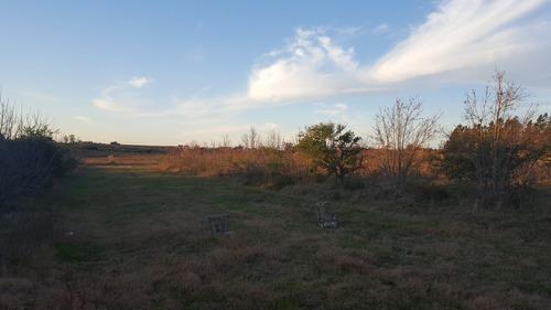 10 hectareas con casa y galpon a 3 kmtr de ruta 5.