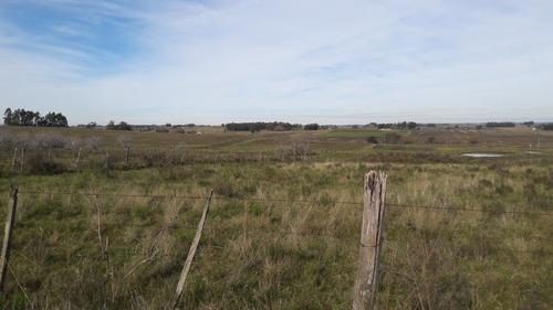10 hectáreas en canelones