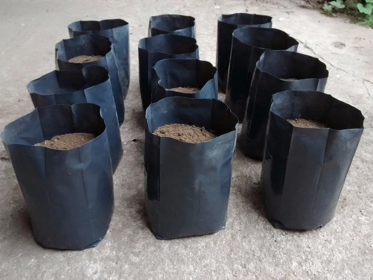 100 Bolsas Macetas Negras Nylon Vivero Plantas Arboles 2 Lt 250