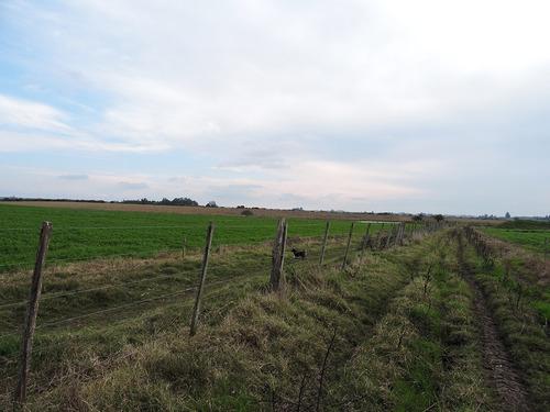 109 hectáreas en san antonio
