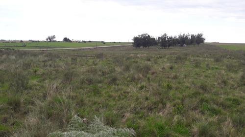 11 hectáreas con casa a 100 km de montevideo