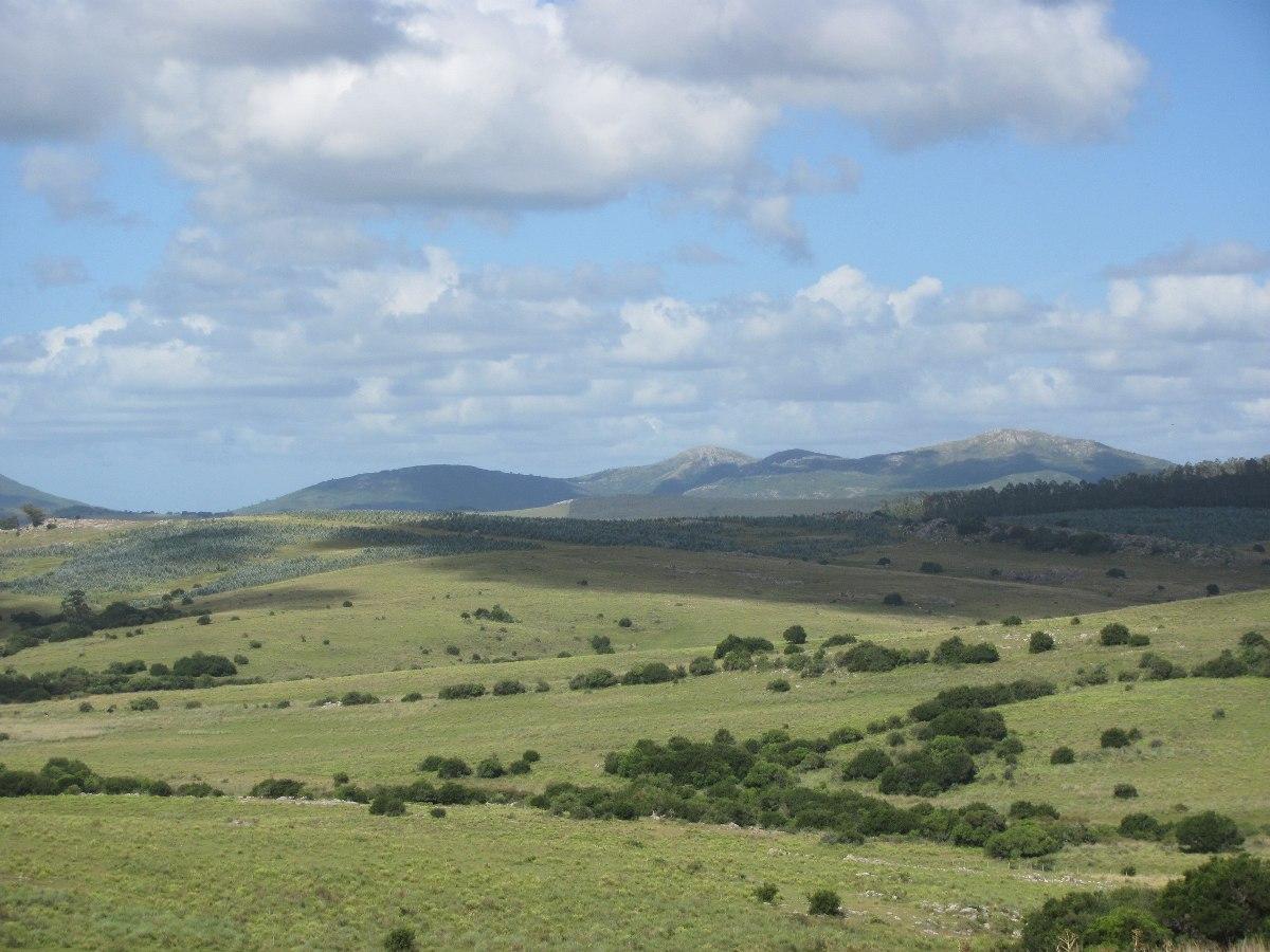 110 hás; bonito campo serrano; explot: ganadera y descanso.