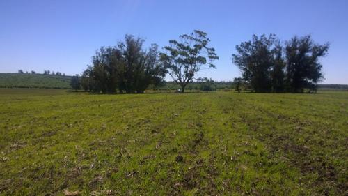 12 chacras de 3 y 4 hectareas desde u$s18000 precio final