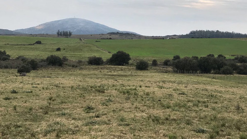 123 has, maldonado -a 2 km  ruta interbalnearia