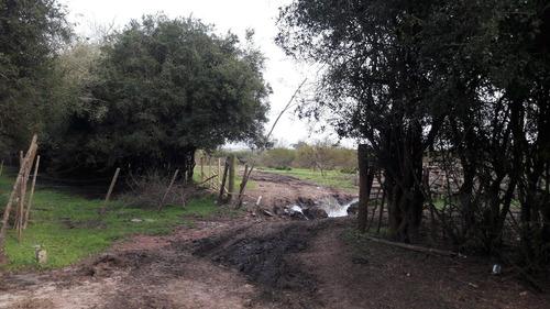 14 hectáreas a 30 km de montevideo