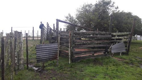 14 hectáreas con casa, bajó de precio !!