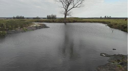17 hectáreas sobre camino a 75 km de montevideo