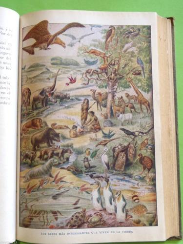 1920 historia natural zoologia crustaceos moluscos