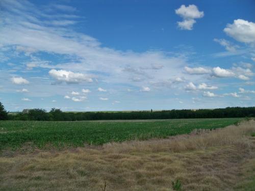 198 has agrícolas sobre ruta en soriano