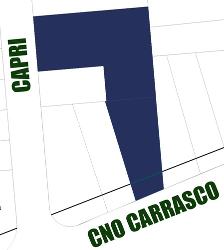 2 padrones con salida a camino carrasco y a capri