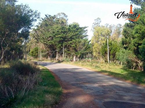 2 terrenos en avenida antonio lussich 16.000mt2