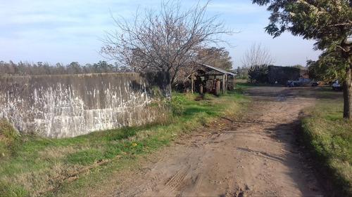 21,6 ha tropezón 2 casas a 4 km del radio urbano- salto