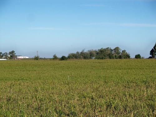 274 has agrícolas en colonia con casco e instalaciones
