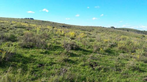 28 hectáreas a 7 km de la ruta, zona tranquila