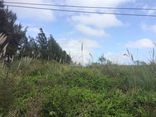 3 hectareas en ruta 101