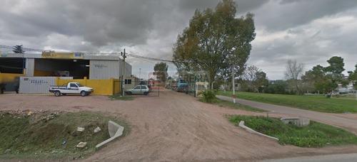 3 terrenos de 400 m2 aprox. cada uno - total 1234 m2