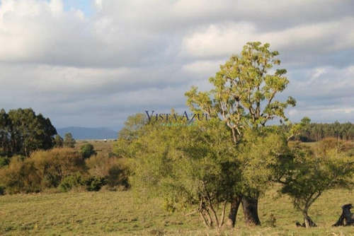 31.5 hectareas en solis de mataojo - ref: 5583