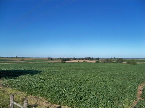 34 has agrícolas ganaderas en colonia zona de nueva helvecia