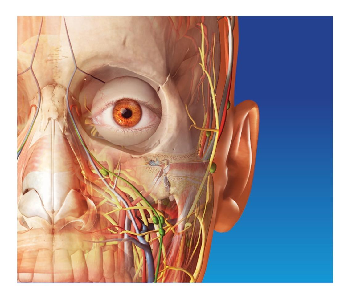 3d Pc Programa Medicina Anatomia Humana Body Atlas Digital ...