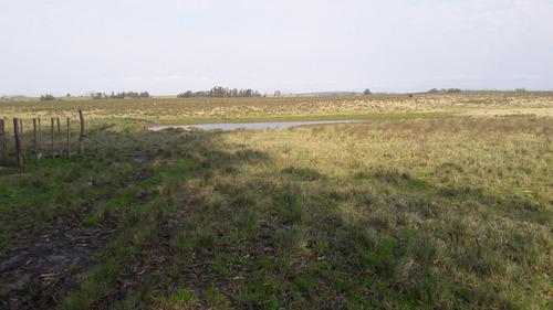 67 hectáreas con casa y arroyo