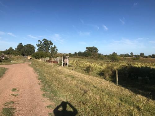 7 has ruta 11, a 5 km de canelones, inmejorable lugar