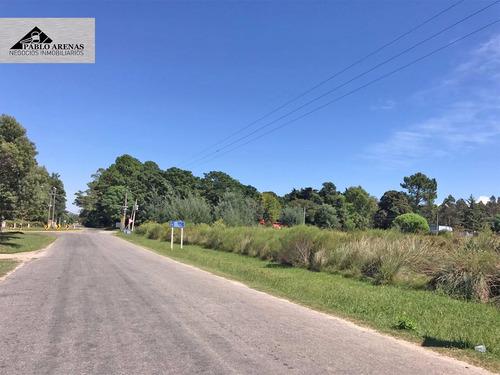 8 terreno en venta - playa los pinos - colonia -  #301