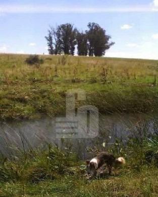 92 has. agricola - ganadero - lavalleja