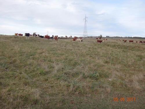 99 hectáreas con arroyo maldonado en el mejor lugar
