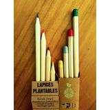 Lápiz Plantable Con Semillas Caja X4 Colores + Envío Gratis!