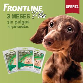 Frontline - Antipulgas Para Perros Hasta 10kg - Pack De 3