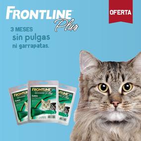 Frontline - Pipetas Antipulgas Para Gatos - Pack De 3