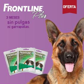 Frontline Antipulgas Para Perros Entre 40 Y 60kg - Pack De 3