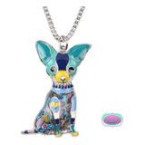 Chihuahua, Mascota, Perrito, Collar, Cadenita, Belleza
