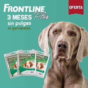 Frontline Antipulgas Para Perros Entre 10 Y 20kg - Pack De 3
