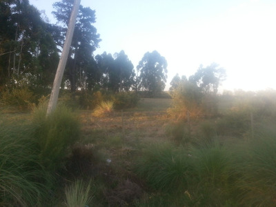 2 Terrenos A 500m Camino De Los Horneros Y 1,3k Interbalnear
