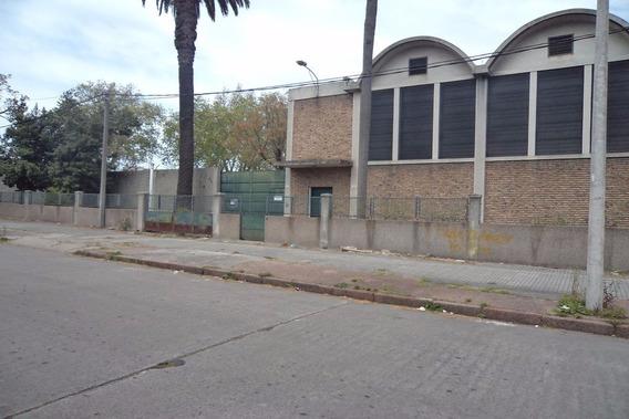 Casa Central - Alquiler Local Deposito Sobre San Martin
