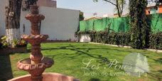 Jardin Fiesta Economico Servicio de Jardines y Quintas en Mercado