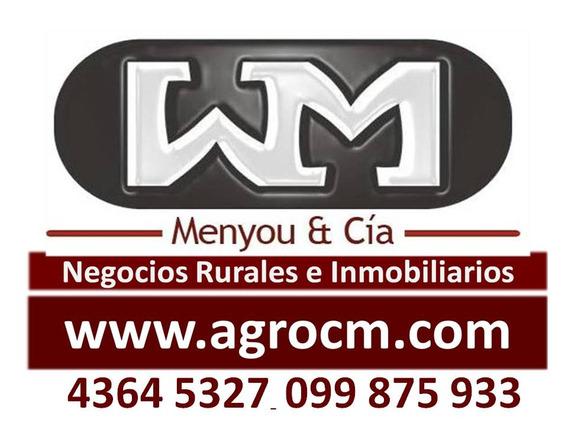 Venta Alquiler Trinidad Flores, Casas, Apto, Galpon, Terreno