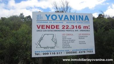 Terreno En Bella Vista, Maldonado, 22316 Mt2 (ref. Y135)
