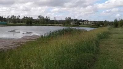 Lindo Terreno En Viñedos De La Tahona - Proximo Aeropuerto/
