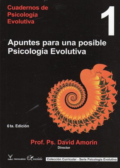 Psicología Evolutiva Tomo 1 Y 2 / David Amorín - Psicolibros