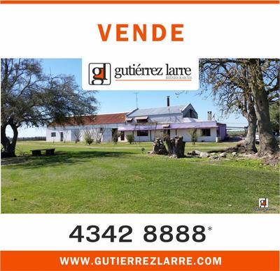 Cómoda Casa + Parque + Lago + 43 Ha Agrícolas Ganaderas
