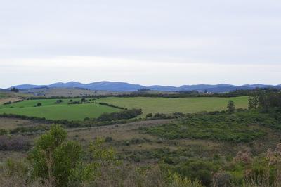 Campo Ideal Para El Descanso, Vistas, Silencio Y Magnetismo.