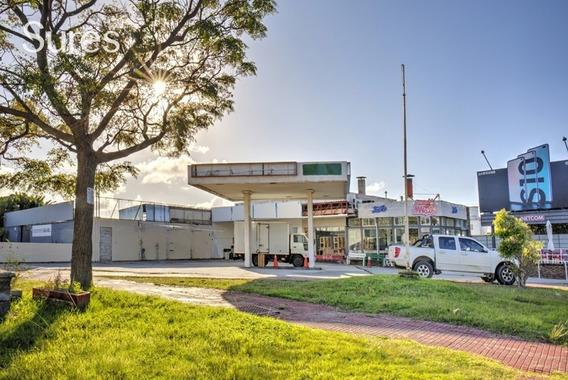 Locales Comerciales Alquiler Punta Gorda Montevideo Local Comercial O Oficina Con Estacionamiento