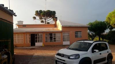 Casa, Bodega Y Viñedos