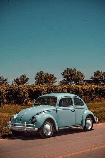 Volkswagen The Beetle 1962