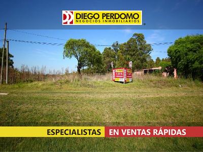 Terreno En Venta, 21000m², Barrio Cololo