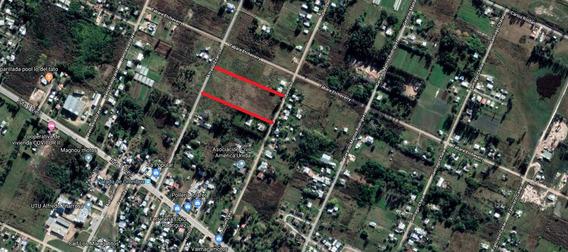 Terrenos Ruta 1 Km 29300 Ciudad Del Plata 14640 Metros