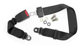Cinturon Seguridad Para Auto 2 Puntas Homologado R16